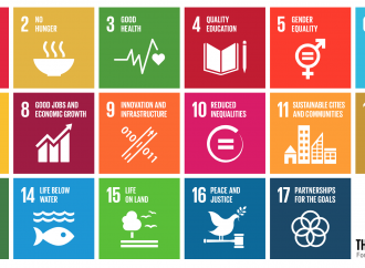 Policy Coherence for Development: Putting it into Practice