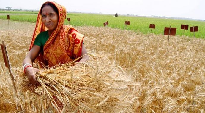 Bangladesh on the Move, Part 1:  A Development Breakthrough